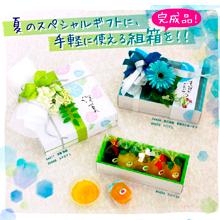 6月のPICKUP商品(ボックス)